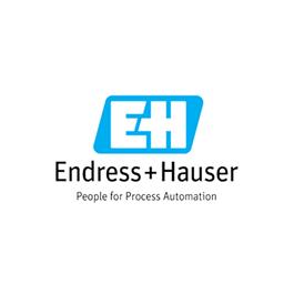Distribuidor oficial autorizado de Endress+Hauser